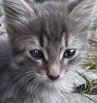 Magic Kitten by MsDeadable