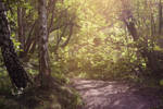 Path to heaven by LiquidBlackRoses