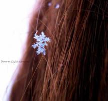 Last Snowflake