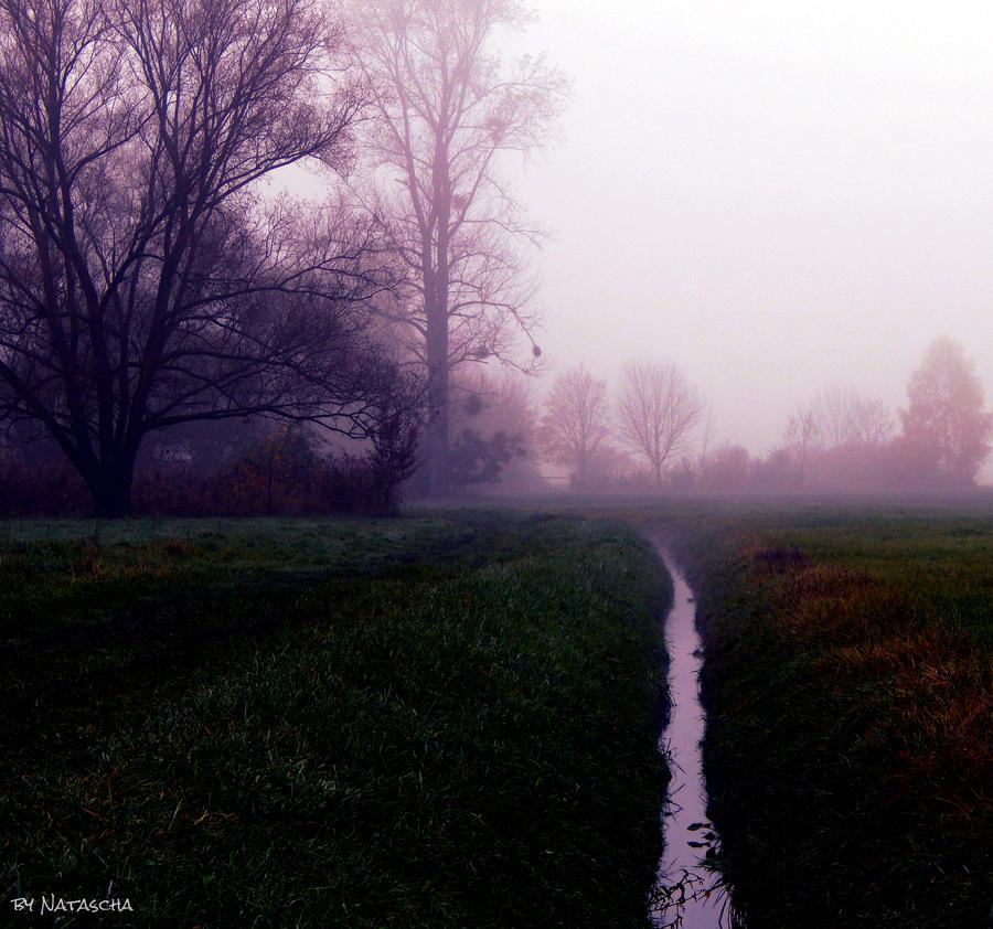 November Blues by Nataschaa