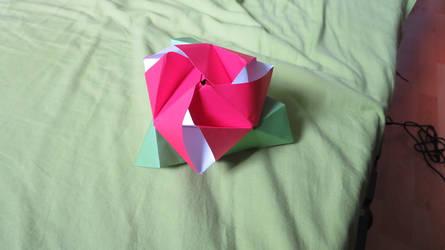 Rose cubique modulaire.