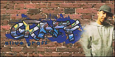FDLS #46 [07/11/11--13/11/11] Votaciones Alive_graff_by_scoeb_gfx-d4d9zlp