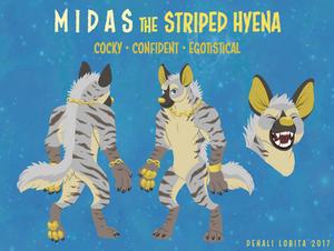 Midas the Striped Hyena