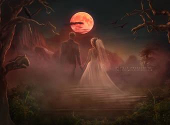 The Bride and Groom - Ghost Stories by Dani-Owergoor
