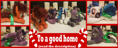 To a good home by Melody-lead