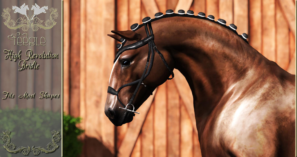 Cheval D'or - Teegle High Revolution Bridle by ChevalDor