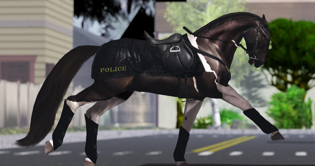 Police riot tack by ChevalDor