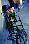 A street bike named Flowers