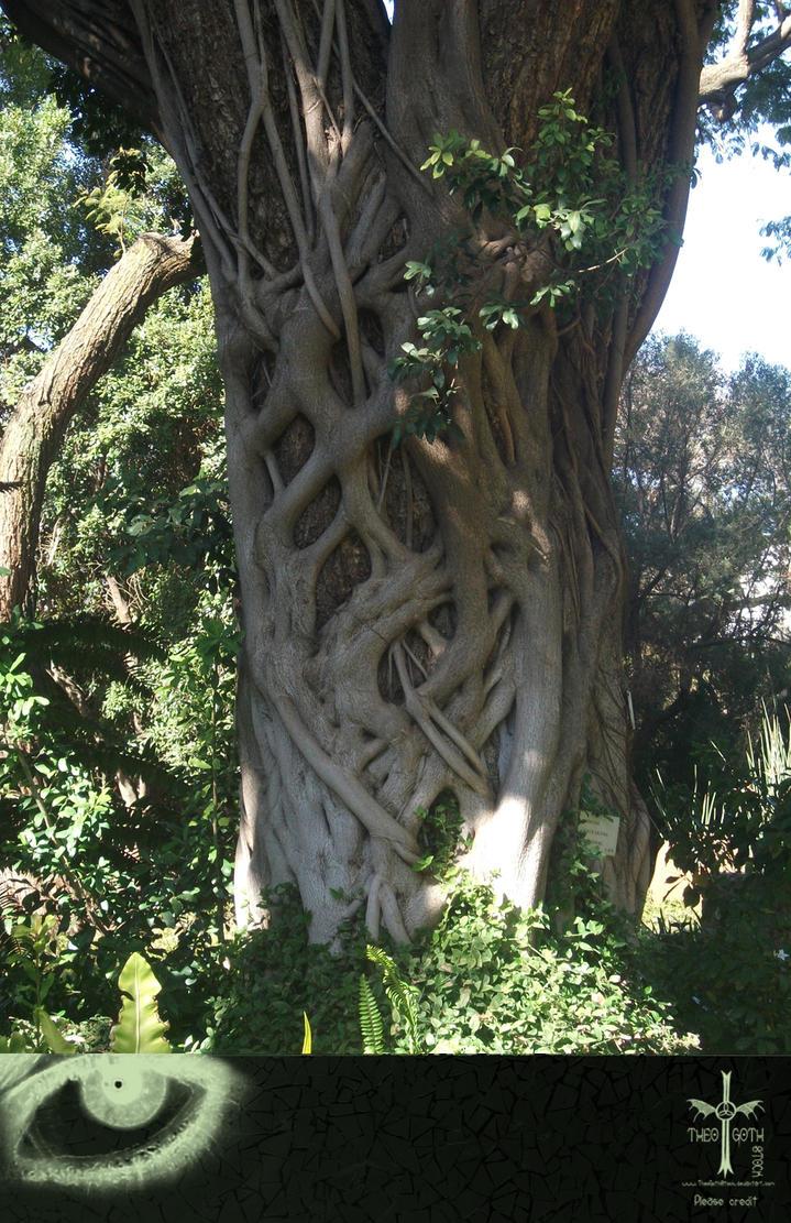 Interesting Tree I by TheoGothStock