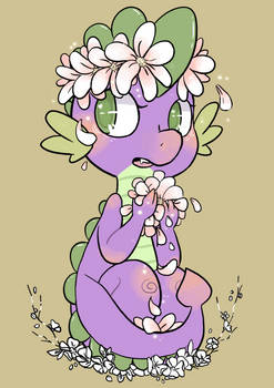 Dragons can be girly too