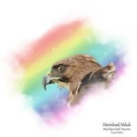 Nhs Hawk