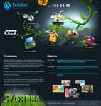Soldex 2