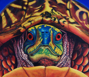 Tony Monahan - Big Daddy Turtle by QCC-Art