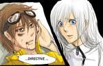 ' Directive '