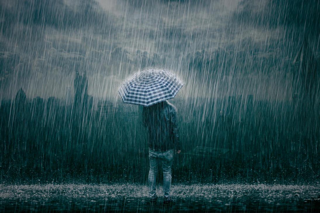 я помню сад и дождь картинки этот вид