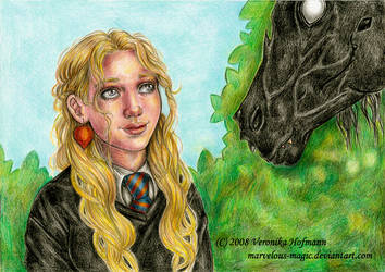 HP Luna and thestral by Verlisaerys