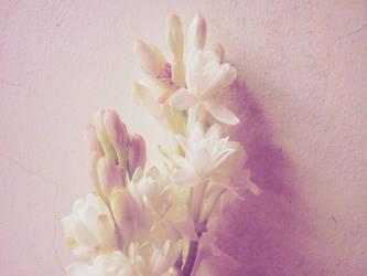 tuberose flower by ayuuaaa