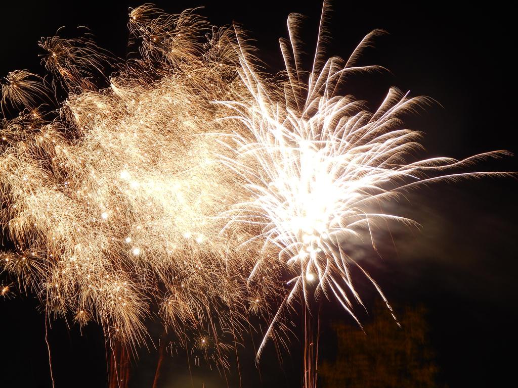 Camera Test- Fireworks by ObliviousPsychotics