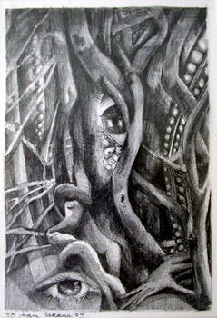 the eye of the forest part 2