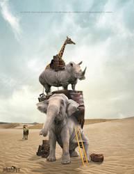 Animal Migration by JakeHays