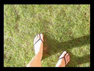 walk the path by o0lost0o