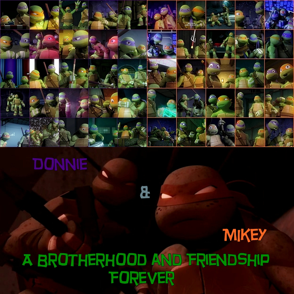 A Brotherhood And Friendship Donnie And Mikey By
