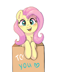 Flutters in a box
