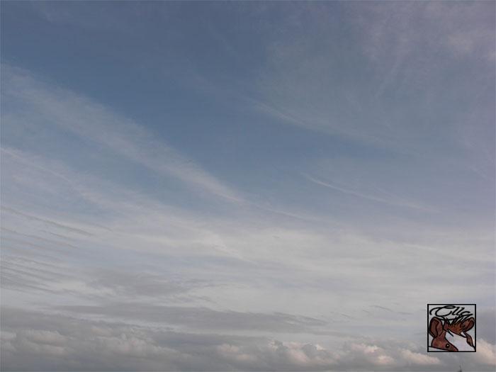 [Atsilouth] demi H.S : c'est blanc... p.4 Sky_by_monsieur_cheval-d47p4g1