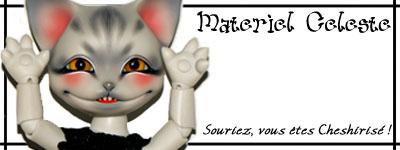 Concours de bannières n.23 Petites Bêtes groupe1 EN VOTE!! Banniere_pour_de_vrai_by_monsieur_cheval-d4xuowo