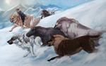 Merit: Snow Chase