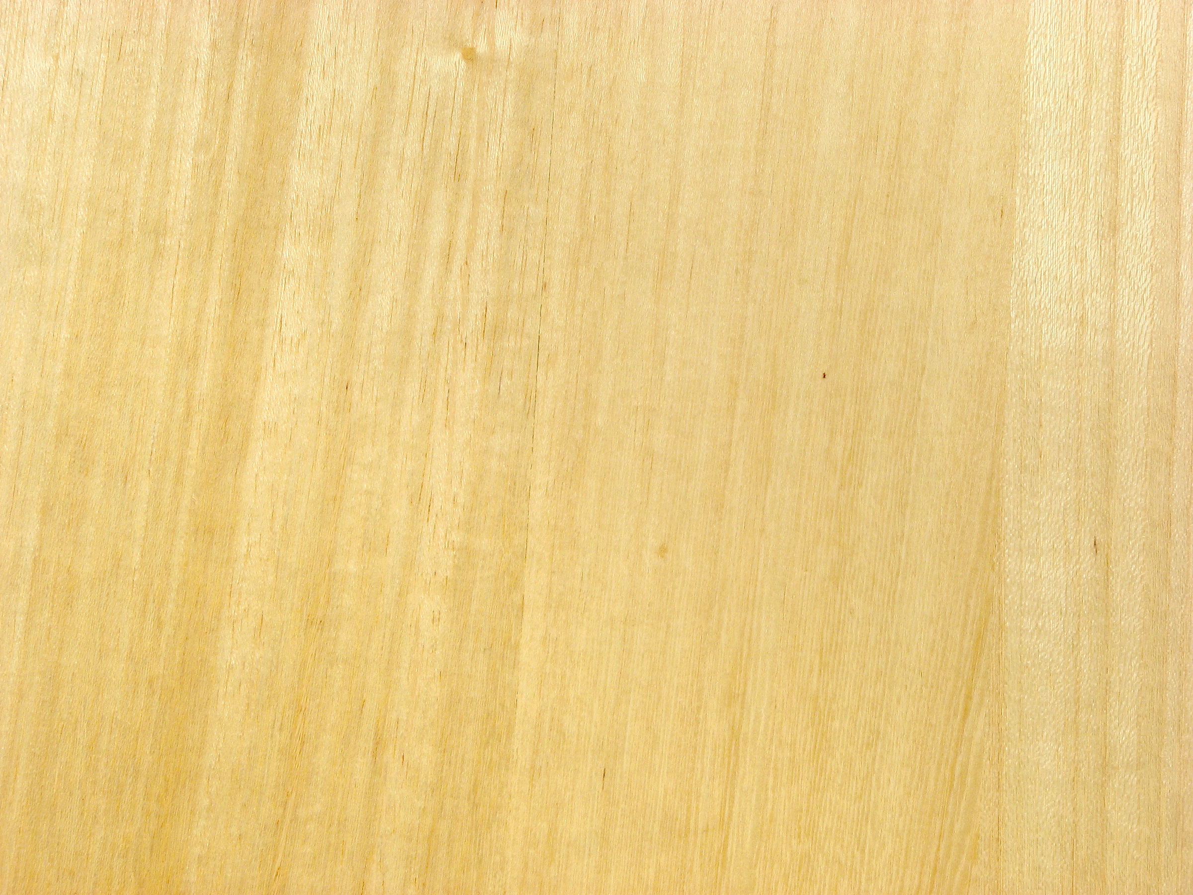 Wood Door Texture collection door wooden texture pictures - images picture are ideas