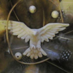 Niahawk's Profile Picture