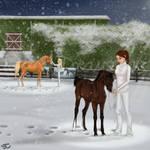 Taste of Snow