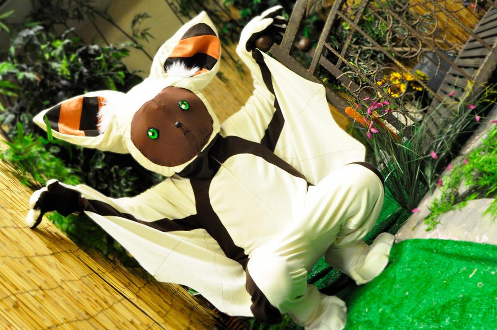 Flying lemur avatar - photo#37