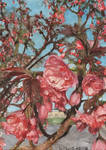 Challenge 8: A blossoming tree by KorsonOraakkeli