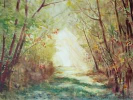 Challenge 20: The path of light