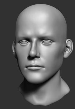 Zbrush Head Proportions Tutorial