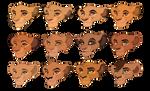 Lion King Cub Adopts