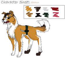 Character Sheet Shaun by Nucozih