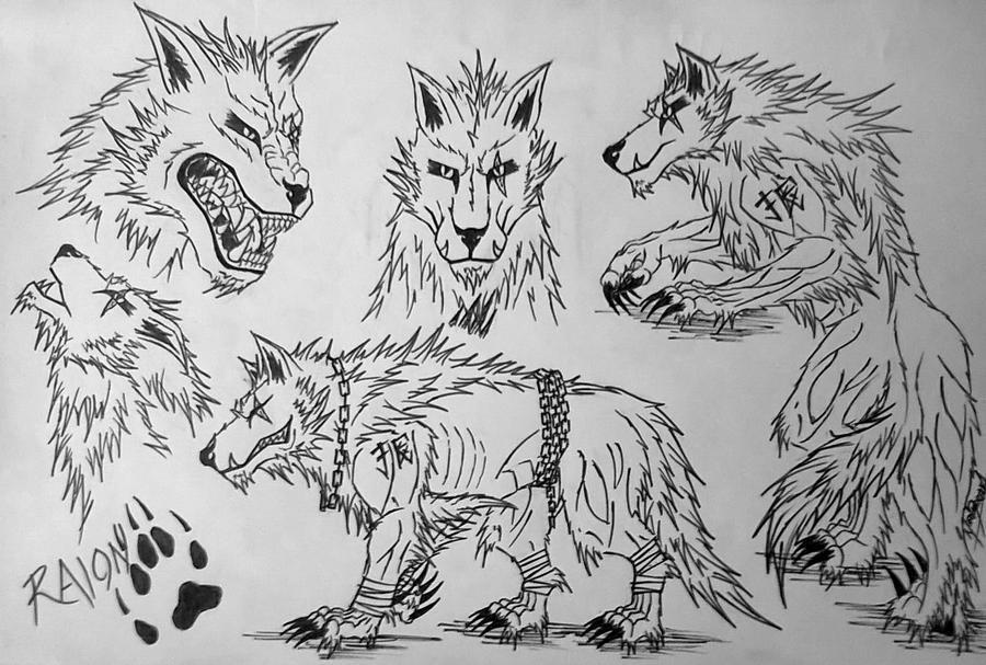 Raion Character Sheet by RensaRaion