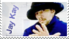 STAMP: Jay Kay II by MAKY-OREL