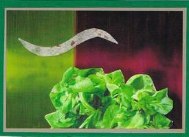 salat by KatDiestel