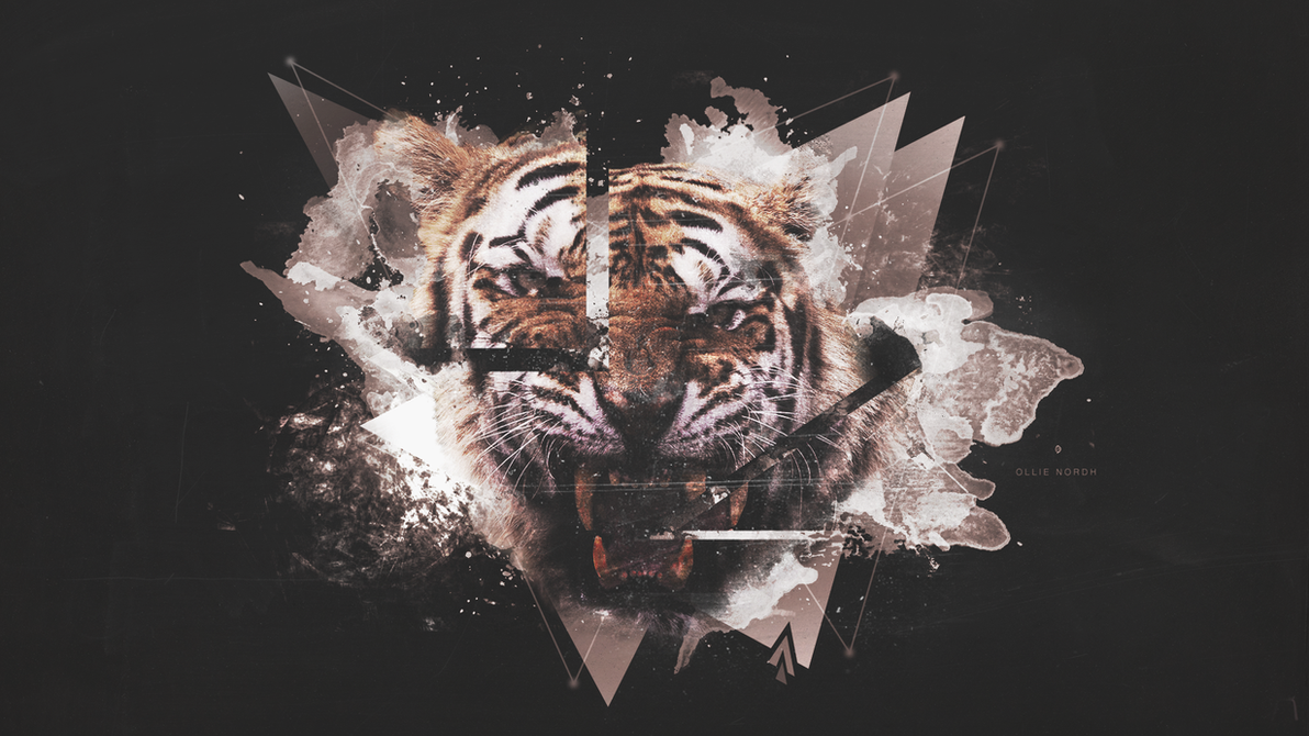 TIGER by OllieNordh