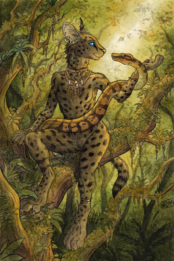 Wilderness.   (updated) by 0laffson