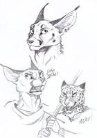 ''Daily'' Sketch - Cat Sketches by 0laffson