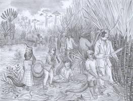 That sugar cane by Zaphkiellane