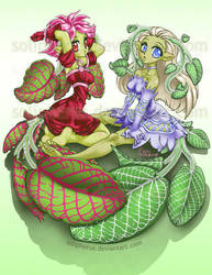 Fittonia Girls by solipherus