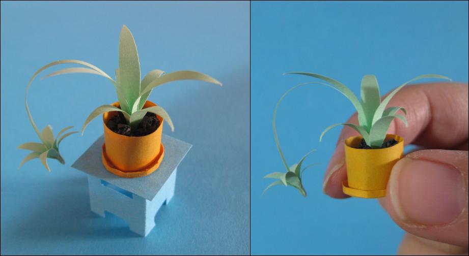 Spider Plant by SkulkingYegg