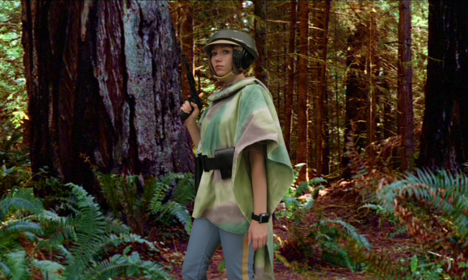 Leia On The Forest Moon By Verdaera On Deviantart