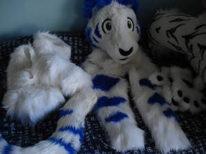 My Complete Partial Blue Tiger Fursuit
